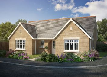 Thumbnail 3 bed detached bungalow for sale in 'rowan Gardens', Rowan Close, Haddenham.