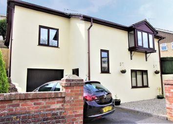 Thumbnail 3 bed detached house for sale in Stansfeld Avenue, Paignton