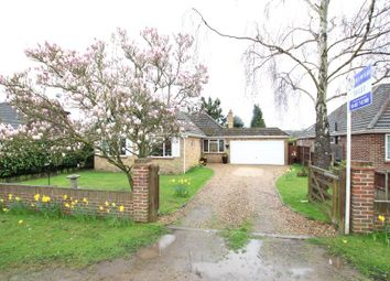 Thumbnail 3 bed bungalow to rent in Cuckoo Lane, West End, Woking