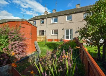 Thumbnail 2 bed flat to rent in Smalls Square, Brechin, Angus