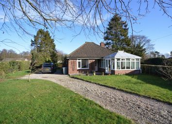 Thumbnail 3 bed detached bungalow for sale in Rectory Road, Horstead, Norwich, Norfolk