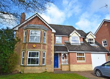 Thumbnail 4 bed detached house to rent in Wren Close, Horsham