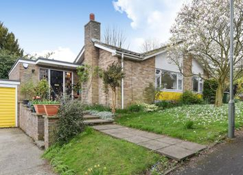 Thumbnail 4 bed bungalow to rent in Birchfield Grove, Epsom