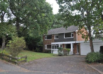 Thumbnail 4 bed detached house to rent in Felton Road, Parkstone, Poole