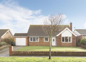 Thumbnail 3 bed detached bungalow for sale in Leicester Avenue, Cliftonville, Margate