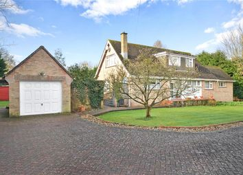 Thumbnail 4 bedroom detached house for sale in Recreation Ground Road, Newport, Isle Of Wight
