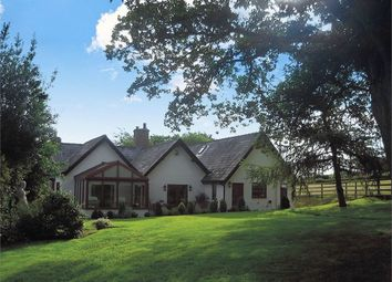 Thumbnail 4 bed detached house for sale in Nantglyn Road, Denbigh