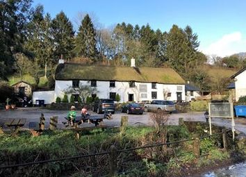 Thumbnail Pub/bar for sale in Cridford Inn, Trusham, Newton Abbot, Devon
