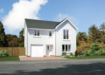 """Thumbnail 4 bedroom detached house for sale in """"Glenmore"""" at Earl Matthew Avenue, Arbroath"""