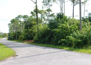 Thumbnail Land for sale in Yeoman Wood, Grand Bahama, The Bahamas