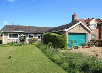 Thumbnail 4 bedroom bungalow for sale in High Street, Landbeach, Cambridge