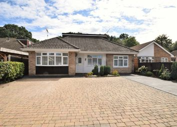 Thumbnail 4 bed detached bungalow for sale in Frogmore Grove, Blackwater, Camberley