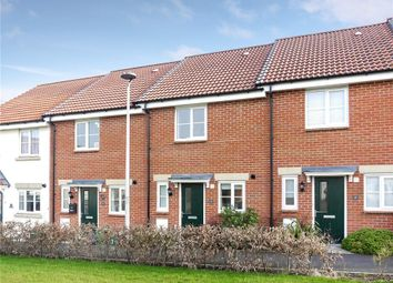 Thumbnail 2 bed terraced house for sale in Tigers Way, Amberside Square, Axminster, Devon