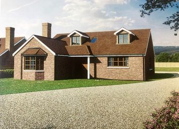 Thumbnail 4 bed detached house for sale in Steeple Road, Latchingdon, Chelmsford