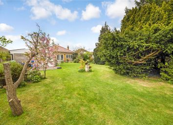 Thumbnail 4 bed bungalow for sale in Hartlip Hill, Hartlip, Sittingbourne, Kent