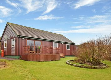 Thumbnail 3 bed bungalow for sale in Whiteness, Shetland