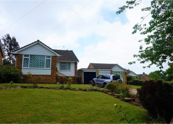 Thumbnail 3 bed detached bungalow for sale in Ghyllside Avenue, Hastings