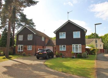 Thumbnail 4 bed link-detached house for sale in Bisley, Woking, Surrey