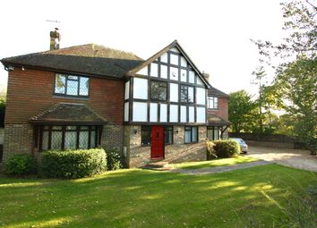 Thumbnail 4 bed detached house for sale in Horsted Lane, Isfield
