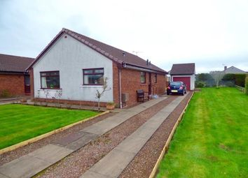 Thumbnail 3 bed detached bungalow for sale in Fair Gardens, Heathhall, Dumfries