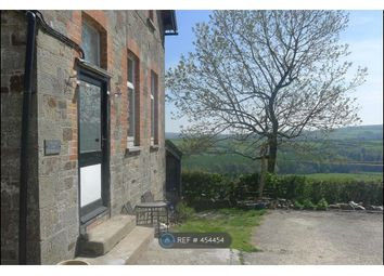 Thumbnail 2 bed flat to rent in Little Silver, Umberleigh