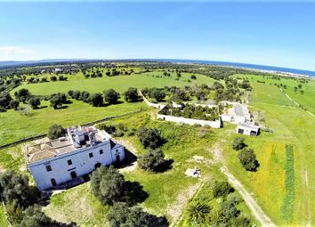 Thumbnail Farm for sale in Salento, Ostuni, Brindisi, Puglia, Italy