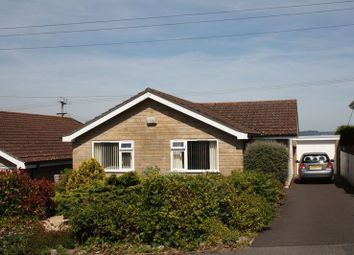 Thumbnail 2 bed bungalow to rent in Ashley Road, Marnhull, Sturminster Newton