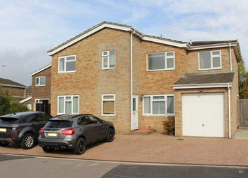 Thumbnail 4 bed detached house for sale in Corfe Close, Alresford