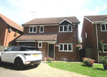 Thumbnail 4 bedroom detached house for sale in Pampas Close, Highwoods, Colchester