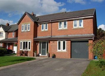 Thumbnail 5 bed property for sale in Dew Forest, Preston