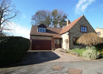 Thumbnail 4 bed detached house for sale in Witton Tower Gardens, Witton Le Wear, County Durham