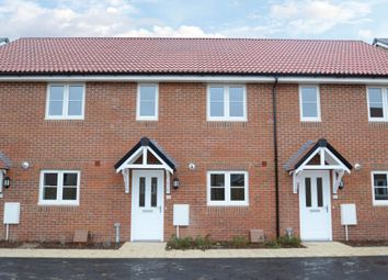 Thumbnail 2 bedroom terraced house for sale in Mace Road, Mildenhall, Bury St. Edmunds