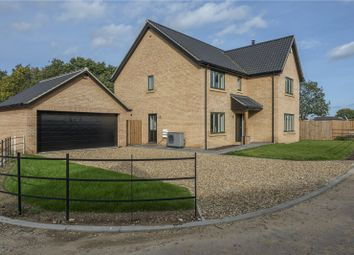 Thumbnail 4 bed detached house for sale in 10 Mill Meadow, Mill Road, Strumpshaw, Norwich