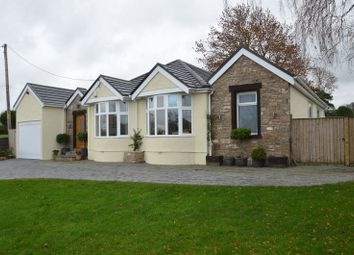 Thumbnail 4 bed detached bungalow for sale in Whitford Road, Whitford, Holywell