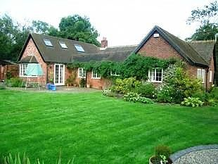 Thumbnail 4 bed bungalow to rent in Nizels Lane, Hildenborough, Tonbridge