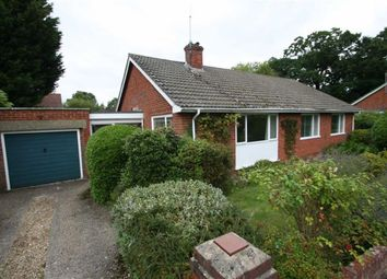 Thumbnail Detached bungalow to rent in Annadale, Cold Ash, Thatcham