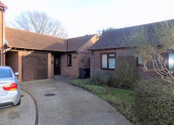 Thumbnail 3 bed bungalow to rent in Delft Gardens, Cowplain, Waterlooville