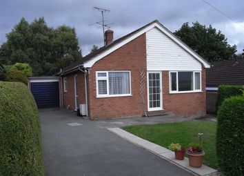 Thumbnail 3 bed detached bungalow to rent in 41, Gungrog Hill, Welshpool, Powys