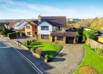 Thumbnail 4 bedroom detached house for sale in Laidlaw Close, Talbot Village, Poole