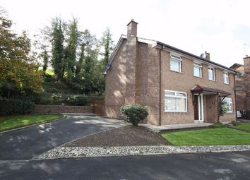 Thumbnail 3 bed semi-detached house for sale in Church View, Ballynahinch, Down