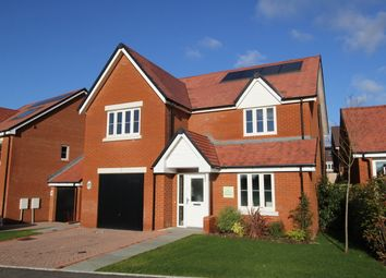 Thumbnail 4 bed detached house for sale in Heatherfields Way, Whitehill, Hampshire