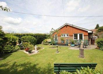 Thumbnail 2 bed bungalow for sale in Orchard Close, Elsted, West Sussex, .
