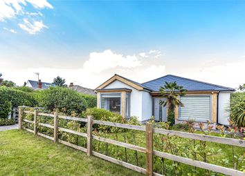 Thumbnail 5 bed detached bungalow for sale in St. Ives Close, Theale, Reading, Berkshire