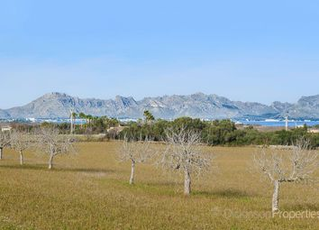 Thumbnail Land for sale in Alcudia, Mallorca, Illes Balears, Spain