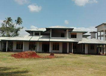 Thumbnail Farm for sale in Farm With Land. Anuradhapura.Nilmini Sha, Anuradhapura 50000 North Central Province, Sri Lanka