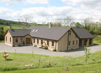 Thumbnail 5 bed detached house for sale in The Wells, Ballynahinch, Down