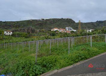Thumbnail Land for sale in Land Ribeira Brava, Tábua, Ribeira Brava, Madeira Islands, Portugal