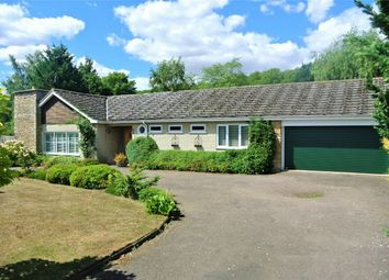 Thumbnail 4 bed detached bungalow for sale in Beech Avenue, Bourne, Lincolnshire