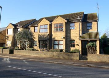 Thumbnail 1 bed detached house to rent in 179 Upper Halliford Road, Shepperton, Surrey