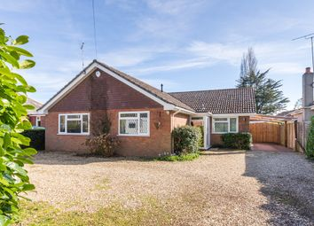 Thumbnail 3 bed detached bungalow for sale in Hightown, Ringwood, Hampshire